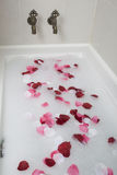 Bath water with rose petals Royalty Free Stock Photography