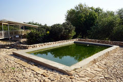 Bath with water. Water from spring Ein Zur in stone bath, Israel royalty free stock photos