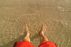 A bather's feet. In shallow sea water and sand Stock Photos