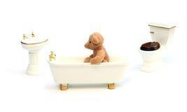 Bathing bear Stock Images