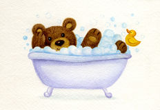 Bathing bear. Stock Photos