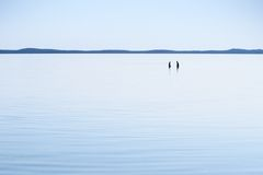 Bathing in blue. Pair bathing in blue lagoon at midsummer sunny noon Royalty Free Stock Image
