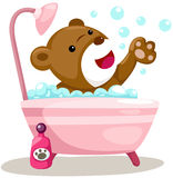 Bathing cute bear Stock Image