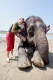Bathing with elephant Stock Image