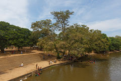 Bathing people in the river, Sri Lanka Stock Photography