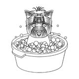 Bathing pet puppy in a bowl. dog,Pet,dog care single icon in outline style vector symbol stock illustration web. Stock Images