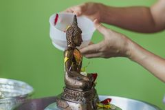 Bathing rite for Buddha image on Songkran Festival. Person who takes bathing rite for Buddha image by scented water include with many kinds of flower such as royalty free stock image