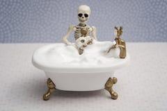 Bathing skeleton dog Royalty Free Stock Images