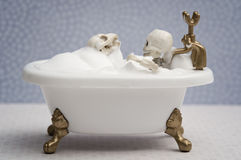 Bathing with skeleton dog Stock Photography
