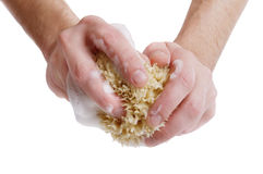 Bathing sponge in hands Royalty Free Stock Images
