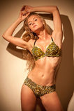 In a bathing suit with leopard pattern Royalty Free Stock Images