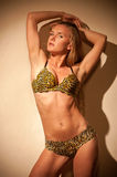In a bathing suit with leopard pattern Stock Image