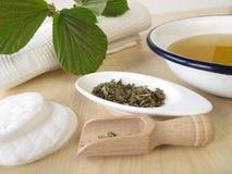 Bathing tea witch hamamelis Stock Image