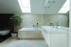 Bathrom spazioso nella soffitta Fotografie Stock