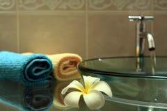 Free Bathroom Royalty Free Stock Photography - 17132707