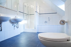 Free Bathroom Royalty Free Stock Images - 18459029