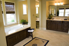Bathroom 2391. Spacious bathroom with a modern tub and tile floor royalty free stock image