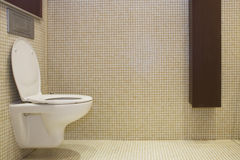 Bathroom. With lavatory pan and locker Stock Images