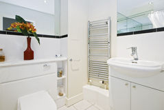 Bathroom. Contemporary bathroom with a bunch of flowers Royalty Free Stock Image