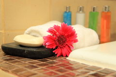 Bathroom Amenities. Lotion, bloom and towel, taken at a Thai Spa Stock Image