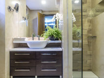 Bathroom. Apartmen bathroom, interior design and decoration Stock Image
