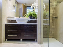Bathroom. Apartment bathroom design and decoration Royalty Free Stock Photo