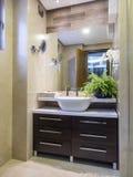 Bathroom. Apartment bathroom interior and decoration Royalty Free Stock Photo