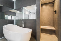 Bathroom with bathtub and shower. Modern bathroom with bathtub and shower in rich residence Stock Photos