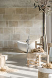 Bathroom with bathtub. Trendy bathroom with white bathtub and wooden decorative accessories Royalty Free Stock Image