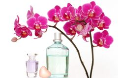 Bathroom beauties. A beauty set with an orchid, different perfumes and a heart-shaped piece of soap Stock Photo