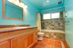 Bathroom in bright blue color with green tile wall trim Stock Image
