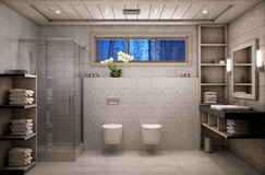 Bathroom chalet Royalty Free Stock Image