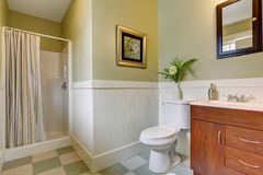 Bathroom with checkered tile floor, and green white walls. Royalty Free Stock Image