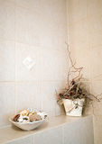 Bathroom corner Royalty Free Stock Image