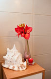 Bathroom decorations royalty free stock photography