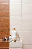 Bathroom decorations Royalty Free Stock Image
