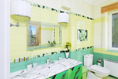 Bathroom design with beautiful grass print on bath cabinet Royalty Free Stock Photography