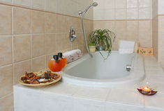 Bathroom detail. Luxury bathroom detail, side of bathtub with soap, towel and plants Stock Images