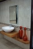 Bathroom detail. Luxury bathroom detail with mirror and decorative elements Stock Image