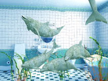 Bathroom dolphins Royalty Free Stock Images