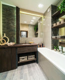 Bathroom in eco style. Modern bathroom decorated in eco style with wooden furniture and green plants royalty free stock image