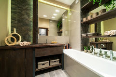 Bathroom in eco style. Modern bathroom decorated in eco style with wooden furniture and green plants royalty free stock photo
