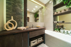 Bathroom in eco style. Modern bathroom decorated in eco style  with wooden furniture and green plants Royalty Free Stock Images