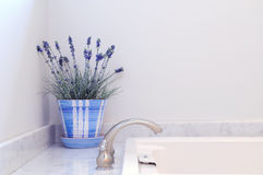 Bathroom Elegance. Bathtub, brass faucet, lavender plant, white and blue flower pot, marble frame and copy space Stock Photo