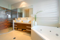 Bathroom ensuite Royalty Free Stock Photo