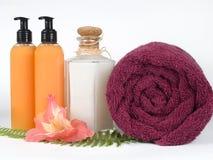 Bathroom essentials Royalty Free Stock Photography