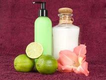 Bathroom essentials Royalty Free Stock Image