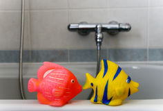 Bathroom fish Royalty Free Stock Photography