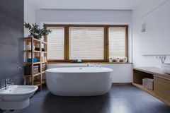 Bathroom with freestanding bathtub. Spacious and comfortable bathroom with freestanding bathtub stock images
