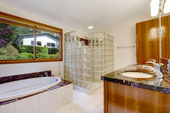 Bathroom with glass block screened shower. Brown cabinet with black granite top and white bath tub with granite trim Royalty Free Stock Photos